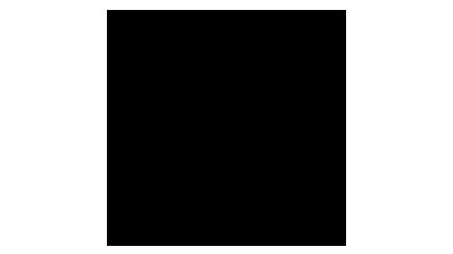 Logo Riani - Regina Moden - Waldshut-Tiengen